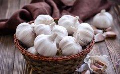 常吃大蒜抗癌抗衰老 九种搭配方法发挥大蒜最大功效