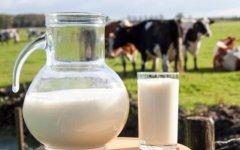一喝牛奶就拉肚子是乳糖不耐受 喝牛奶的禁忌要记牢