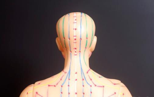 经络联系脏腑起重要作用 经络拍打养生解决身体问题