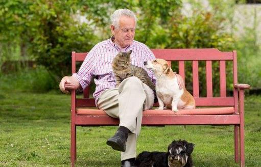 养个宠物 对老人的心理和心情都是十分有益