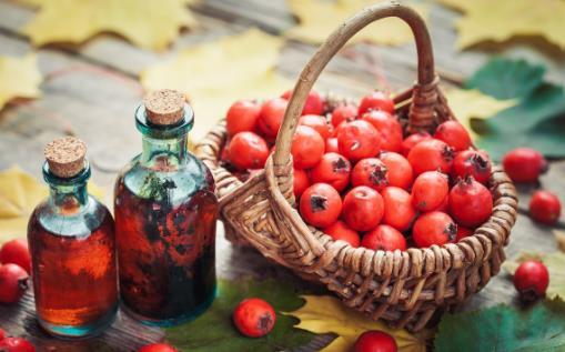 低血压和贫血两者不可混为一谈 低血压的饮食禁忌