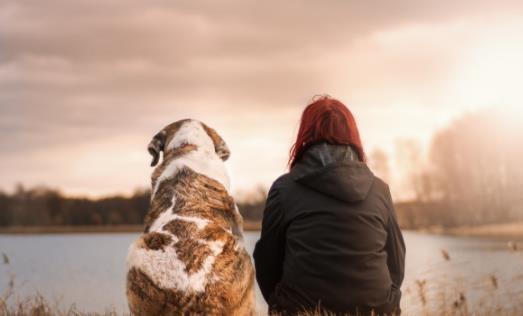 静坐冥想更有益健康 能减轻生活的压力