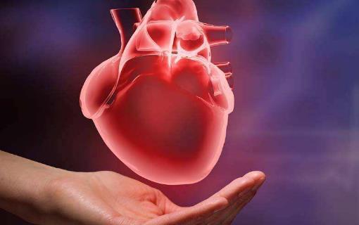 """心脏病""""偏好""""的5类人 心脏最喜欢的食物"""