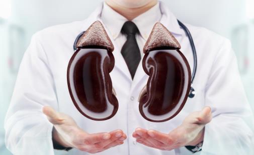 是否所有肾虚的人都需要补肾 中国人常犯的补肾错误