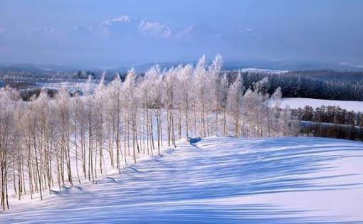 冬季不可错过的最美旅游景点