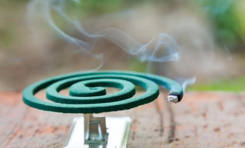夏季常使用的蚊香到底有没有毒 使用蚊香的注意事项
