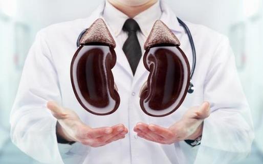 生活中肾好的人都有的特征 日常养肾护肾秘诀盘点