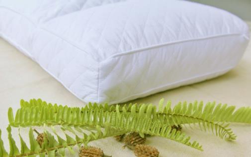 枕头不对睡眠成颈椎病帮凶 选购合适的枕头学问多