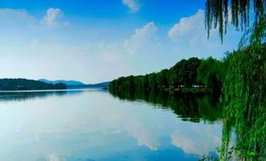 西湖灵隐寺的千年娑罗树