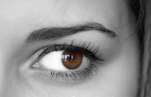 眼睛红血丝过多