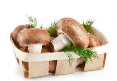 香菇萃取物可以预防宫颈癌